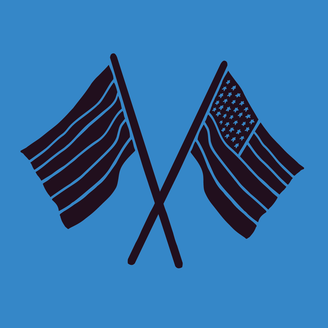 vt_posters_icons_web_flag.png