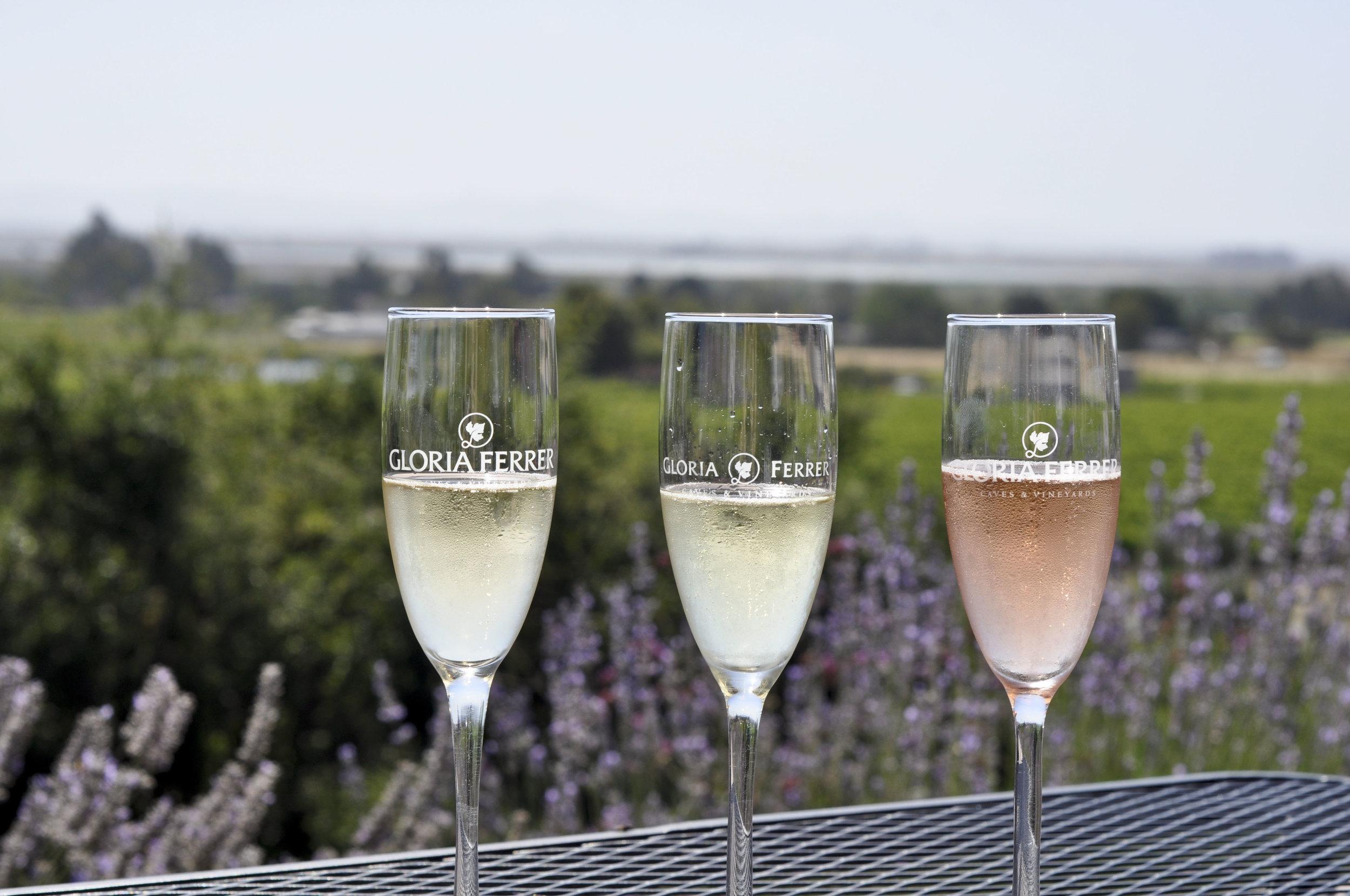 GloriaFerrer_wines