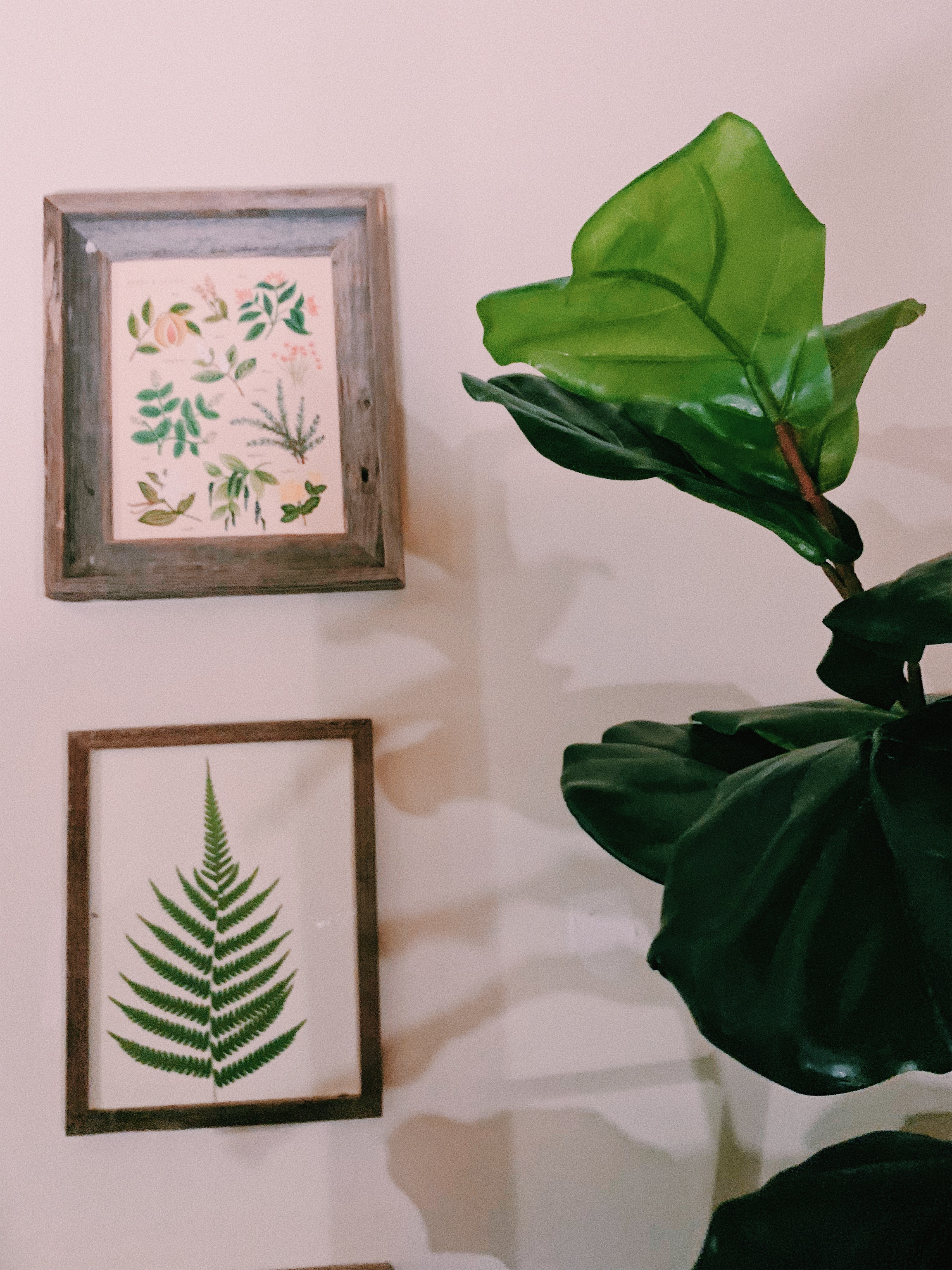 The leaf is a fern leaf preserved from 2 Belle Oak Drive, Daniel's childhood home.