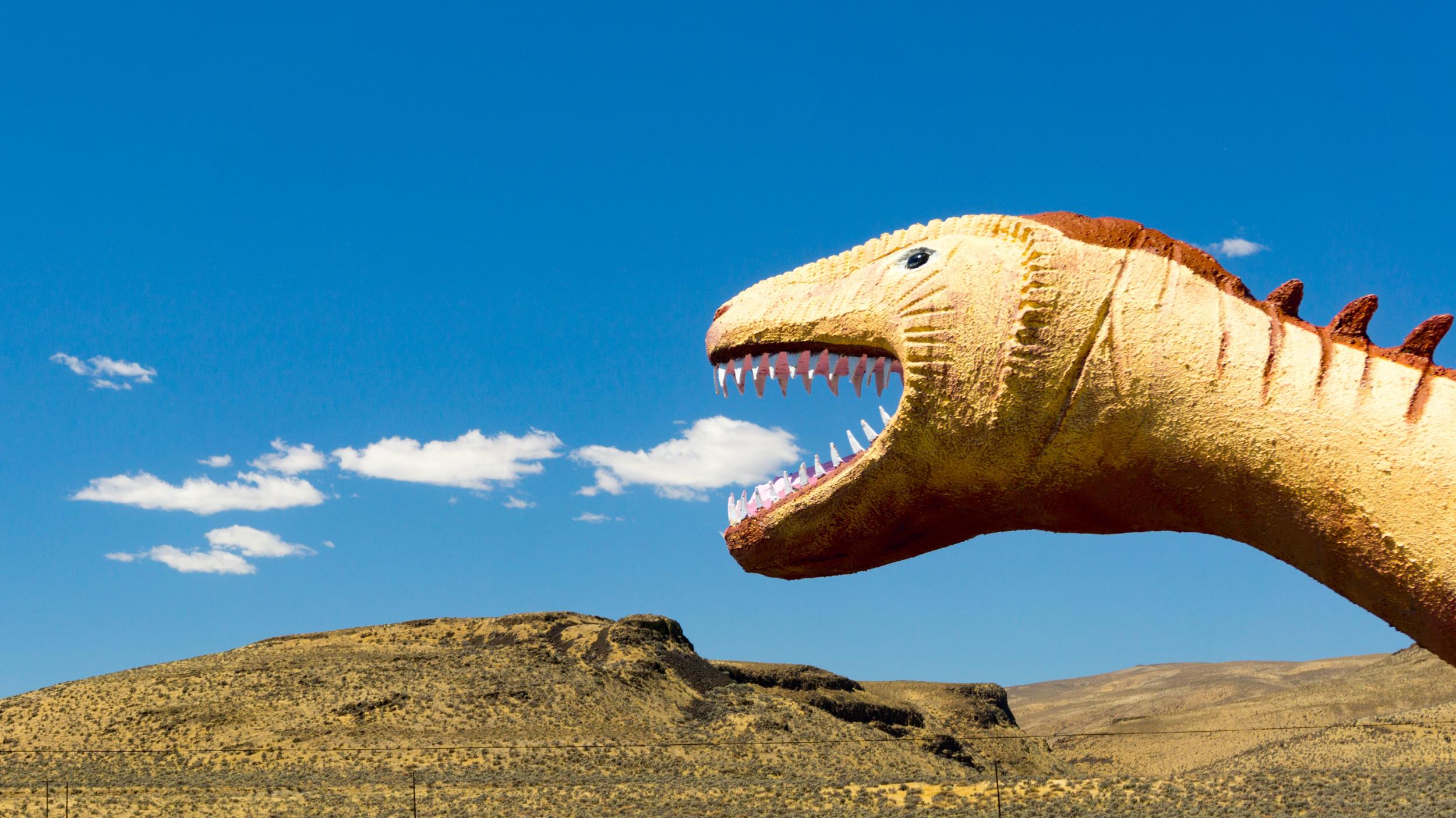 #dinosaur #fire #ginko #petrified #forest #washington #usa