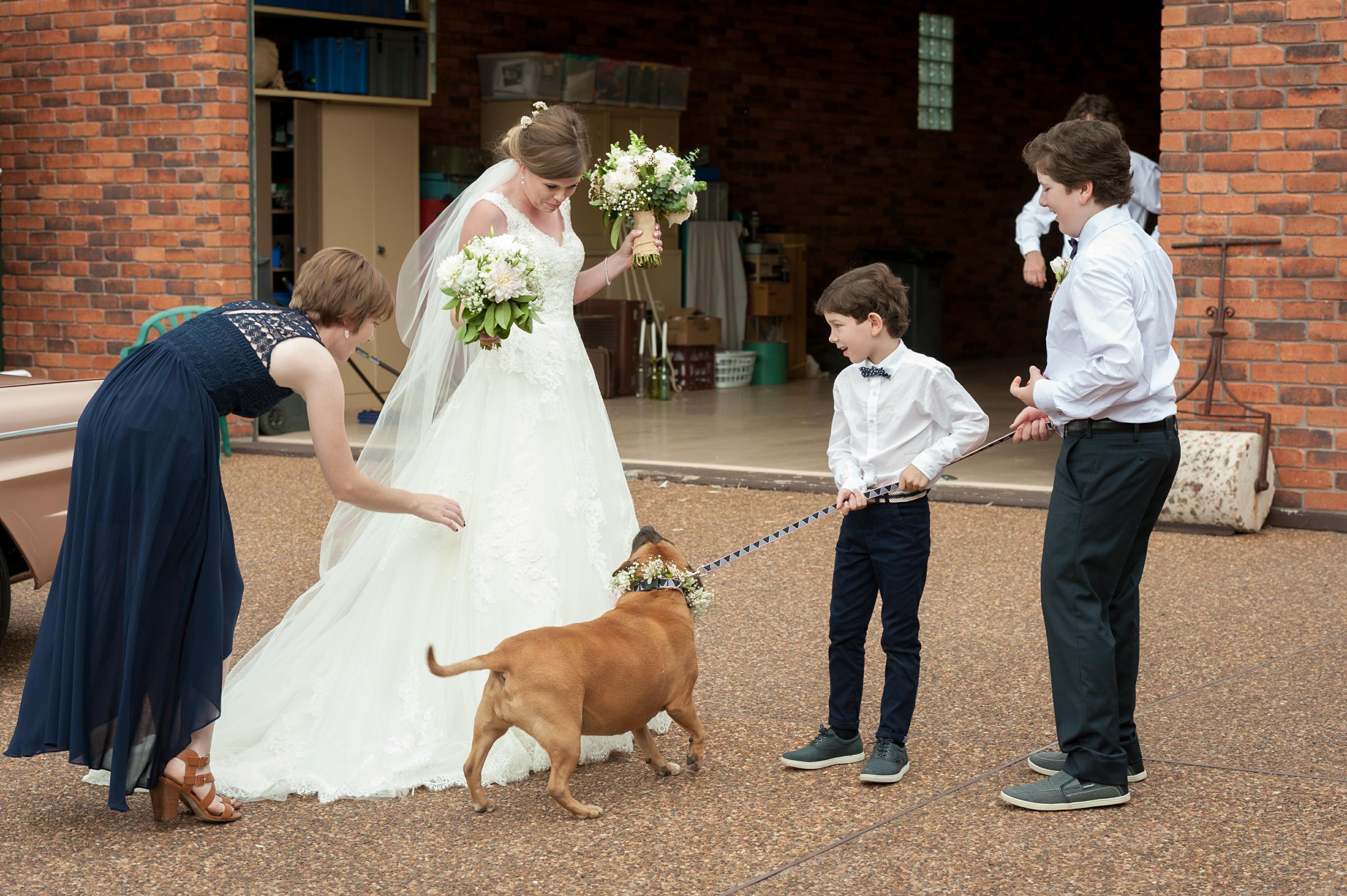 wedding_pet_capri
