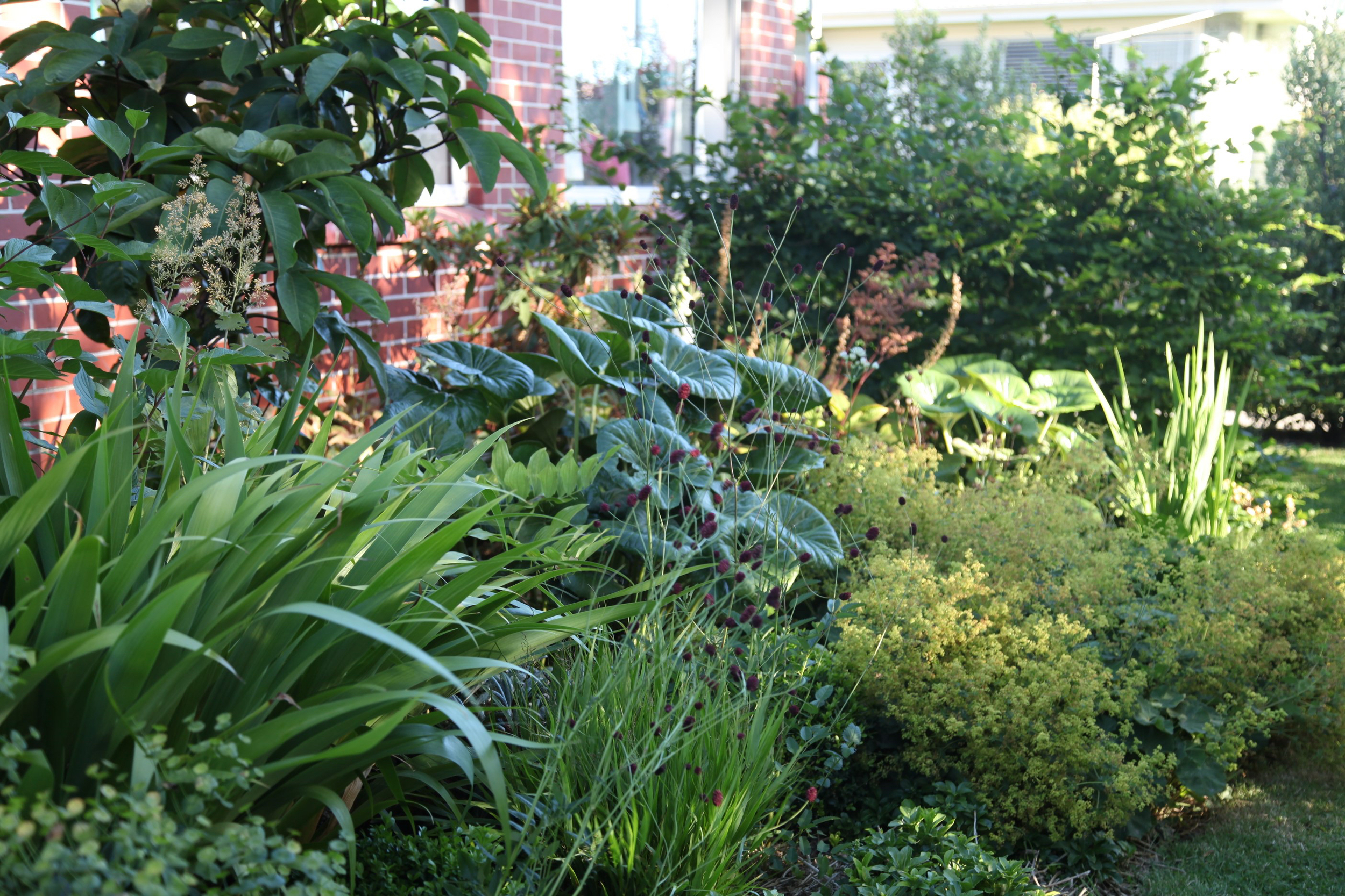 Paul's home garden
