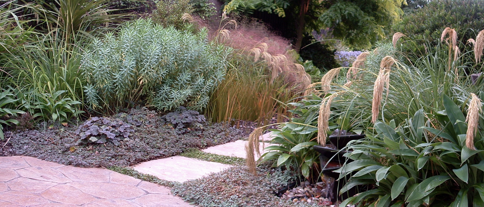 NZ native planting in a Christchurch coastal garden