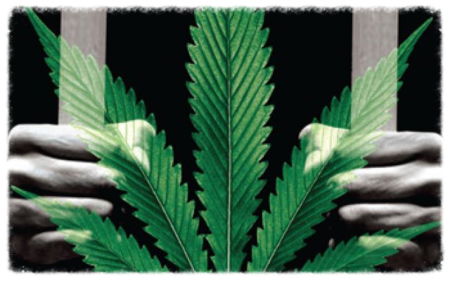 Such imagery as this is used to push the myth of mass marijuana incarceration.
