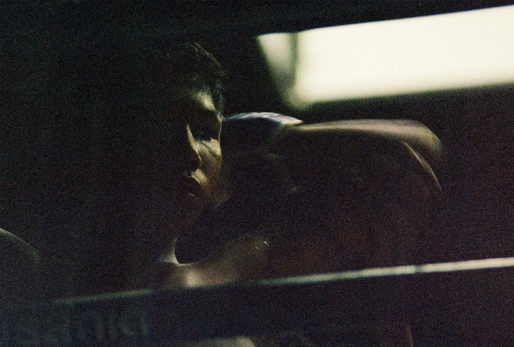 young+boxer.jpg