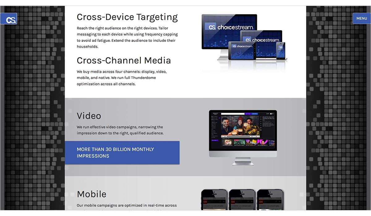 choicestream marketing tool.jpg