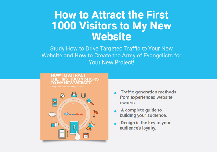 How to Attract the First 1000 Visitors to My New Website.jpg