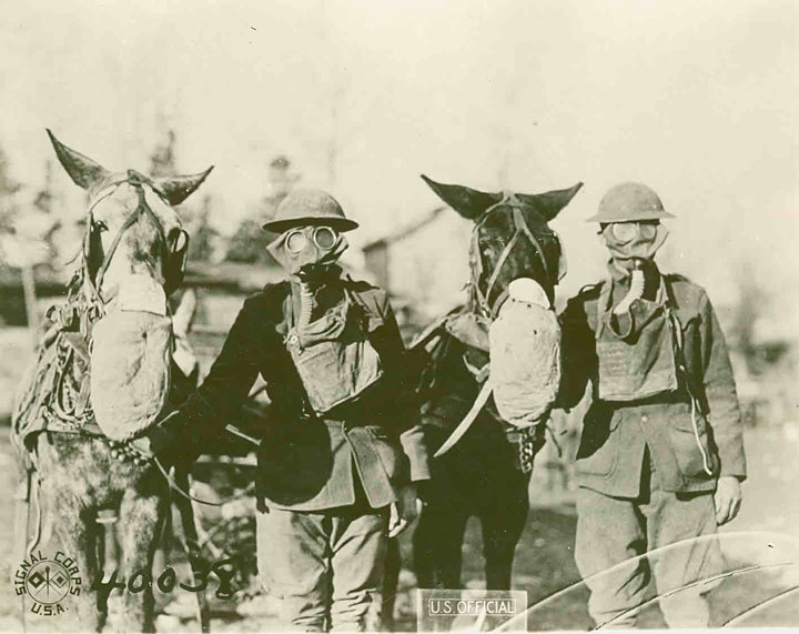 AEF Carrying Party - Masks for Mules