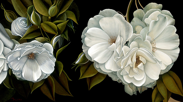 susie sierra Fleur De Nuit, td edition print on cotton rag.jpg