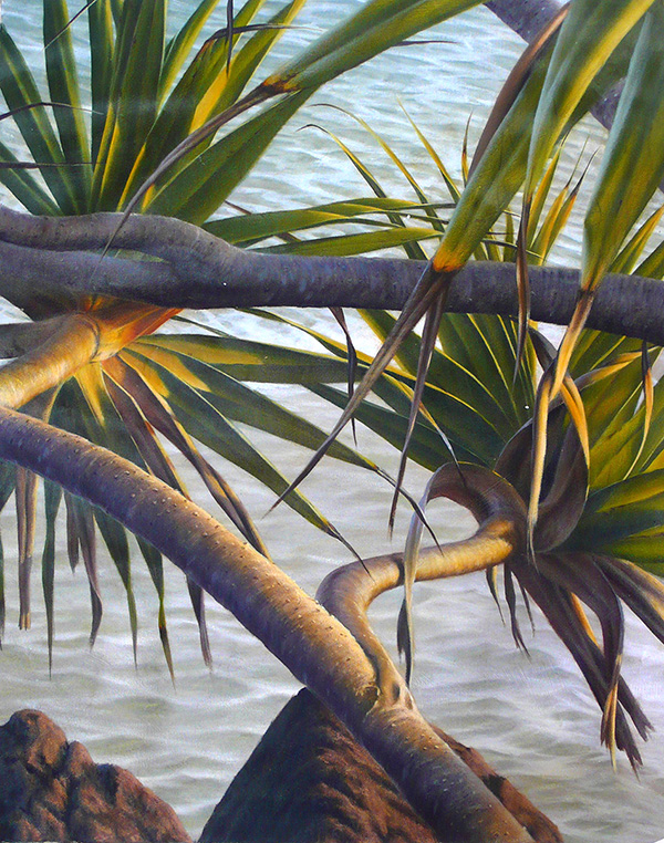 Mark Waller Pandanus 80x99cm $1495.JPG