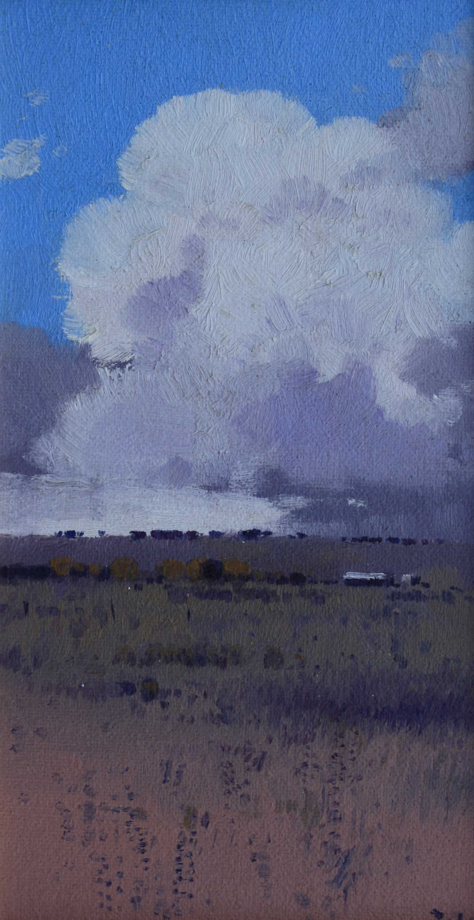 Cloud over Canowindra 23 x 13cm $460.jpg