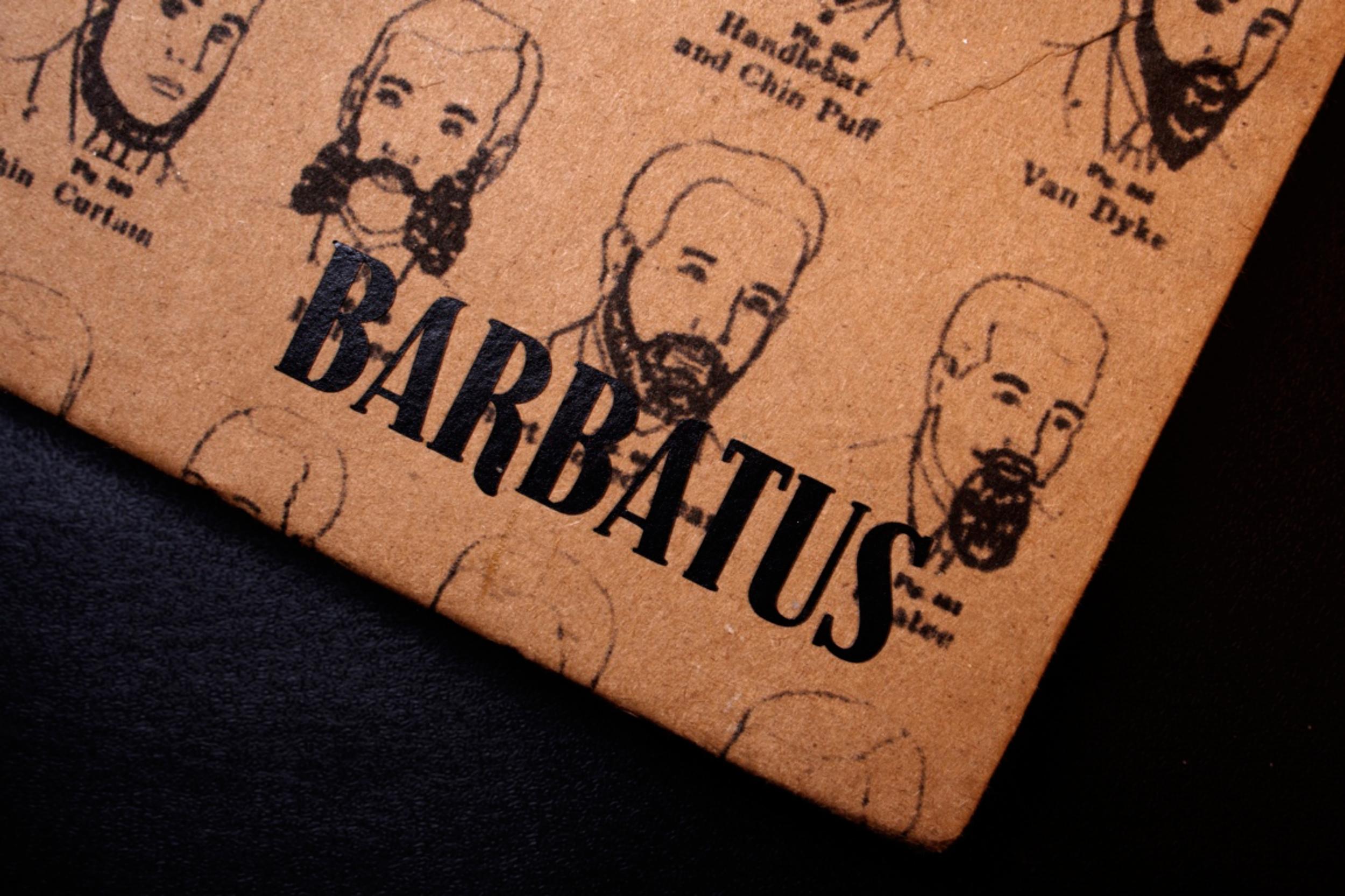 Barbatus (detail), 2007