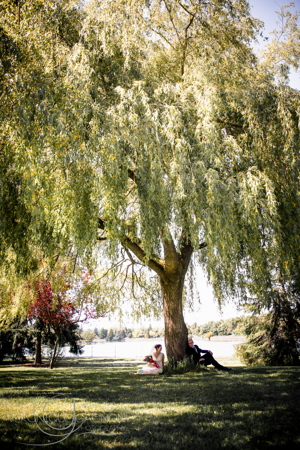 Tiny bride and groom under the biggest willow tree I have ever seen!