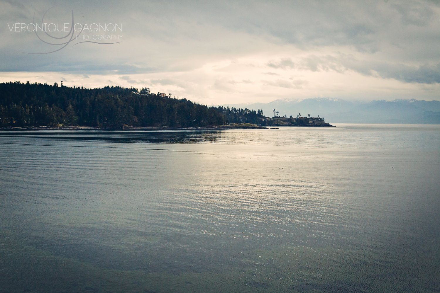 View of Sooke Basin from the Sooke Harbour House