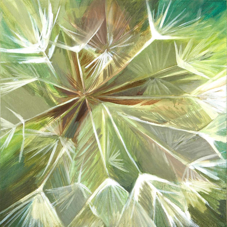 GOAT'S BEARD Oil on canvas, 35cm x 35cm