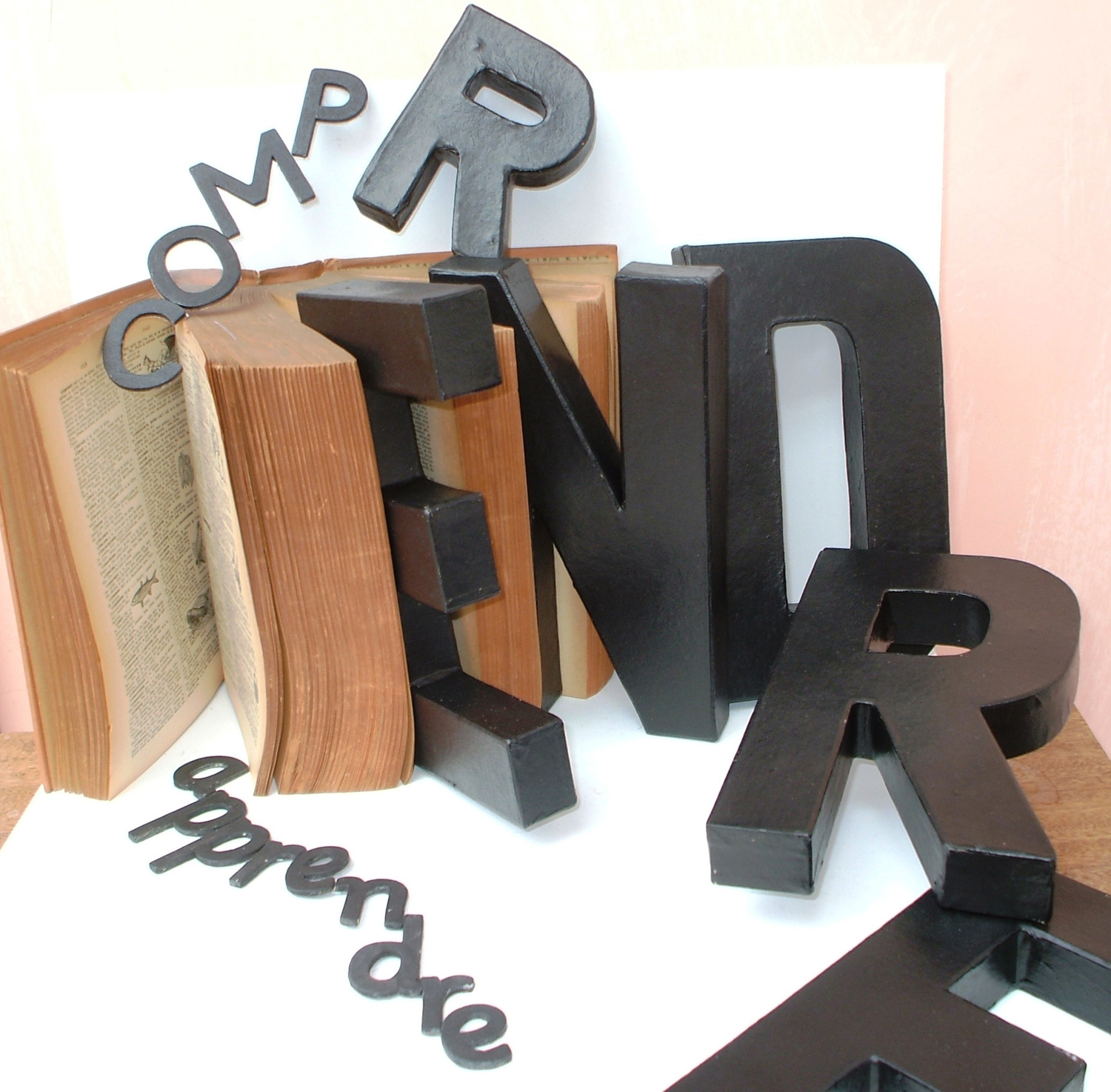 COMPRENDRE Dictionary, cardboard and wood