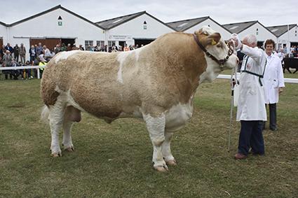 Great Yorskhire 2010 055.jpg