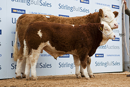 p 513 Cairnview Modesty 5200gns.jpg