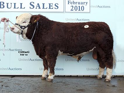 84 Kilbride Farm Warren 9,500.jpg