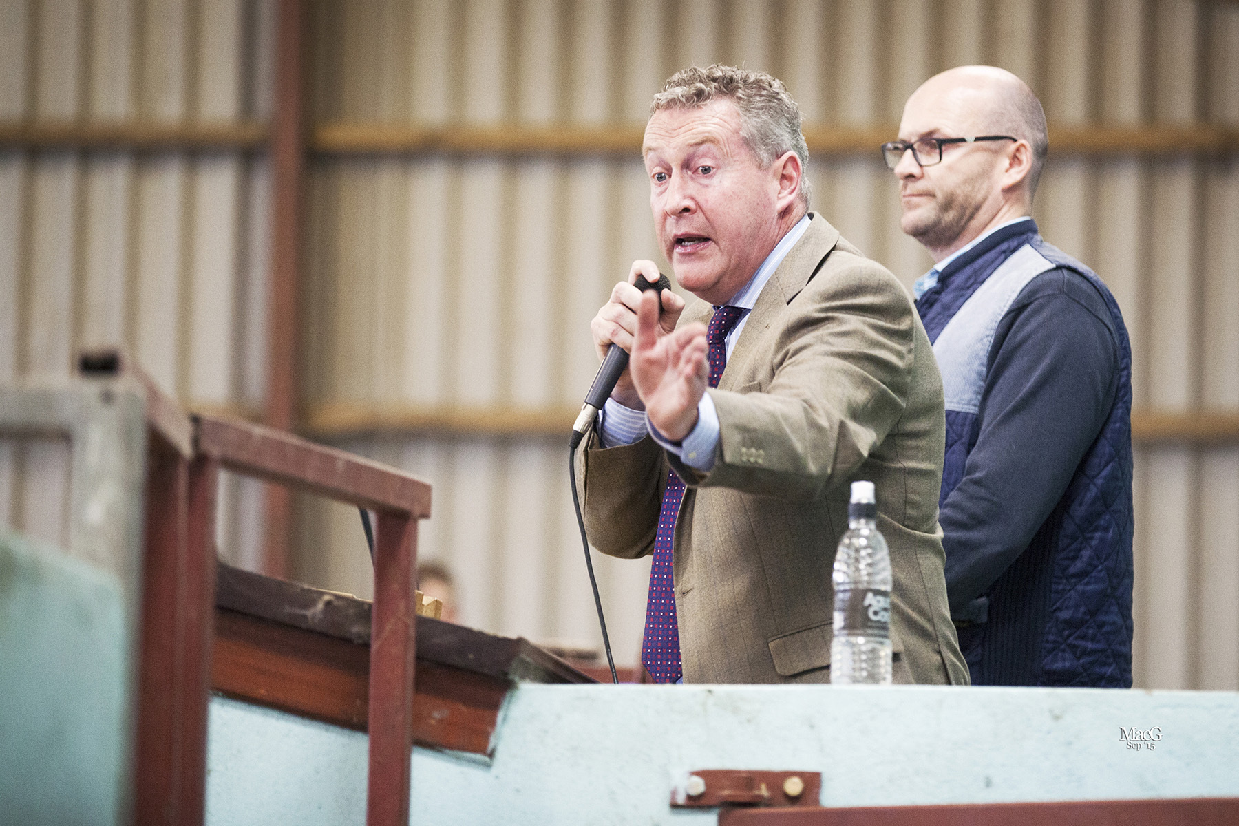 Auctioneer Michael Taaffe, and clerk Brian Taaffe, in the rostrum at the 45th Anniversary elite female show and sale, Moira.