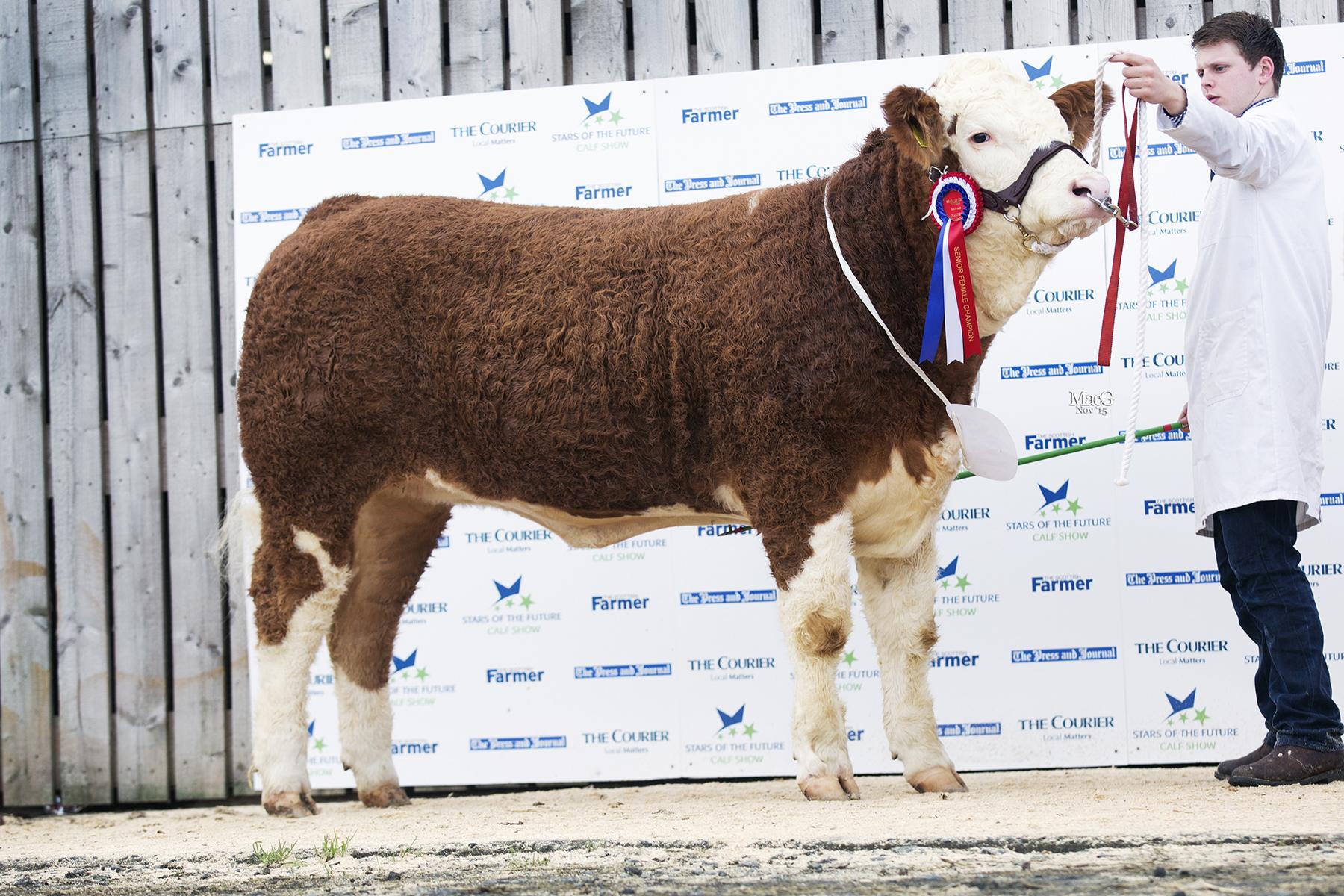 Islavale Deborah 2nd - Senior Female Champion