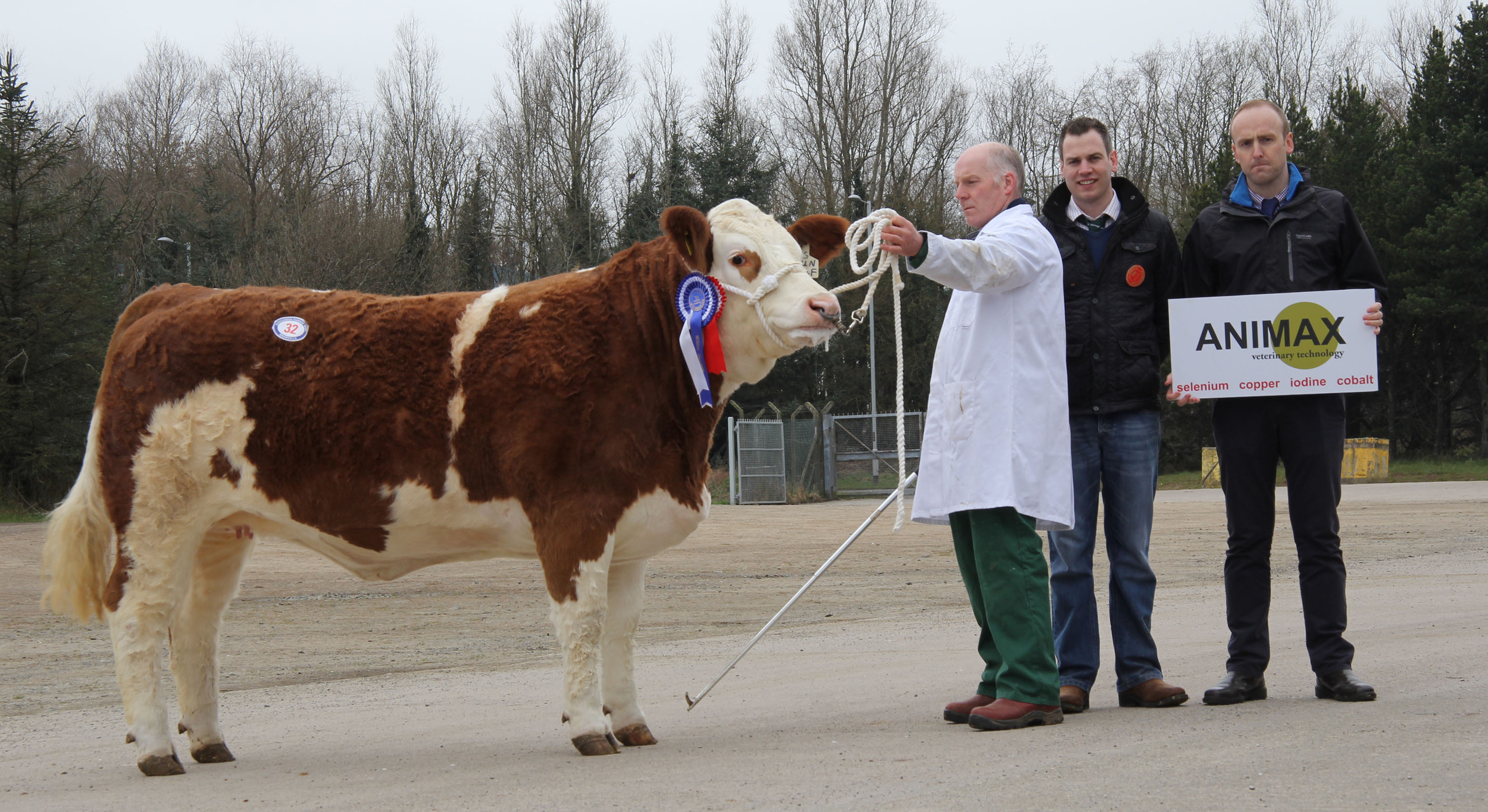 Norman Robson, Doagh, exhibited the reserve female champion Kilbride Farm Eunice 174F. Included are judge Shane McDonald, Tempo; and sponsor Neill Acheson, Animax.