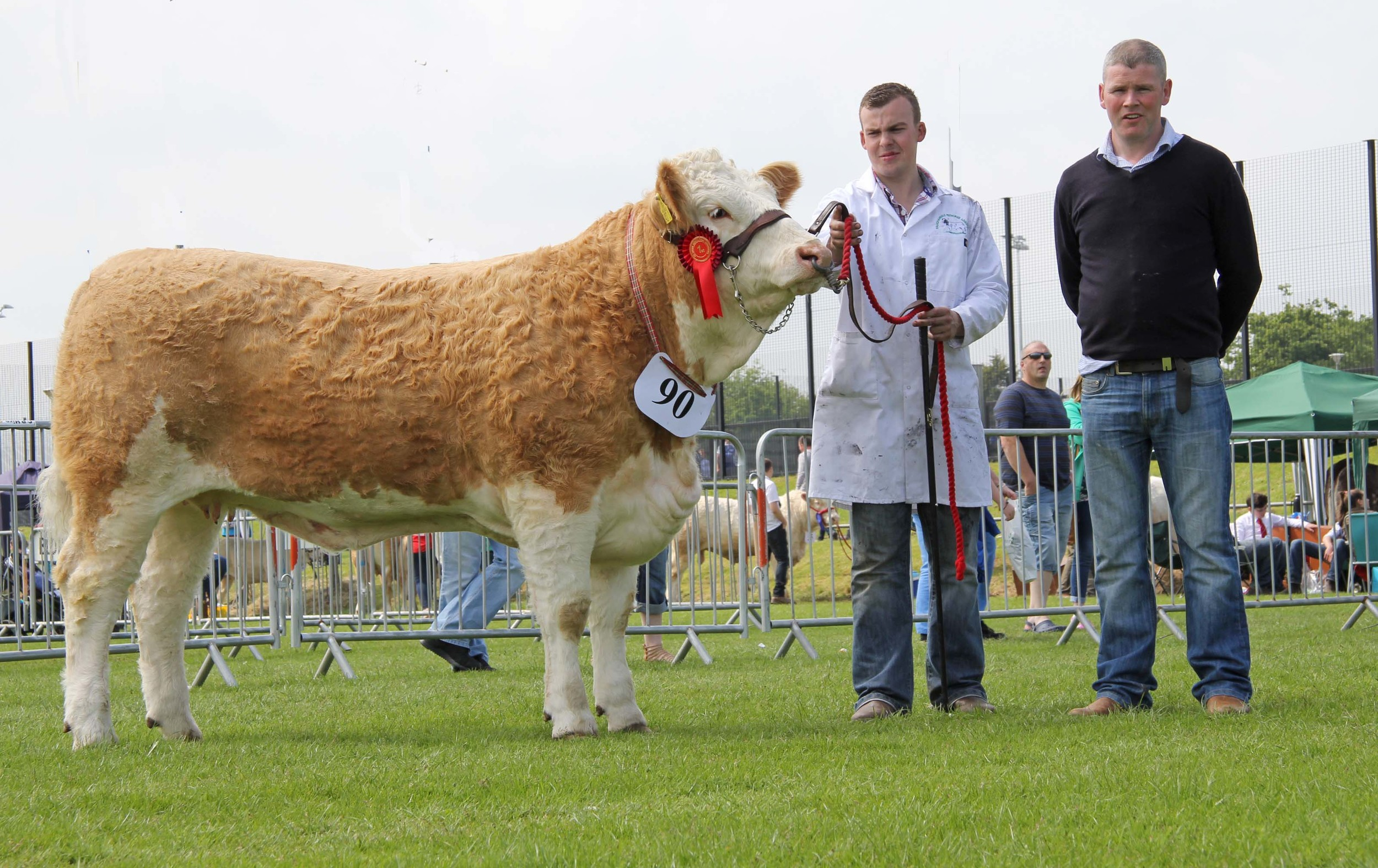 Anthony McGuinness exhibited Cleenagh Good Girl, winner of the Woodcraft Kitchens (Kiilrea) junior heifer derby at Ballymena Show. He was congratulated by sponsor Eamon McCloskey.