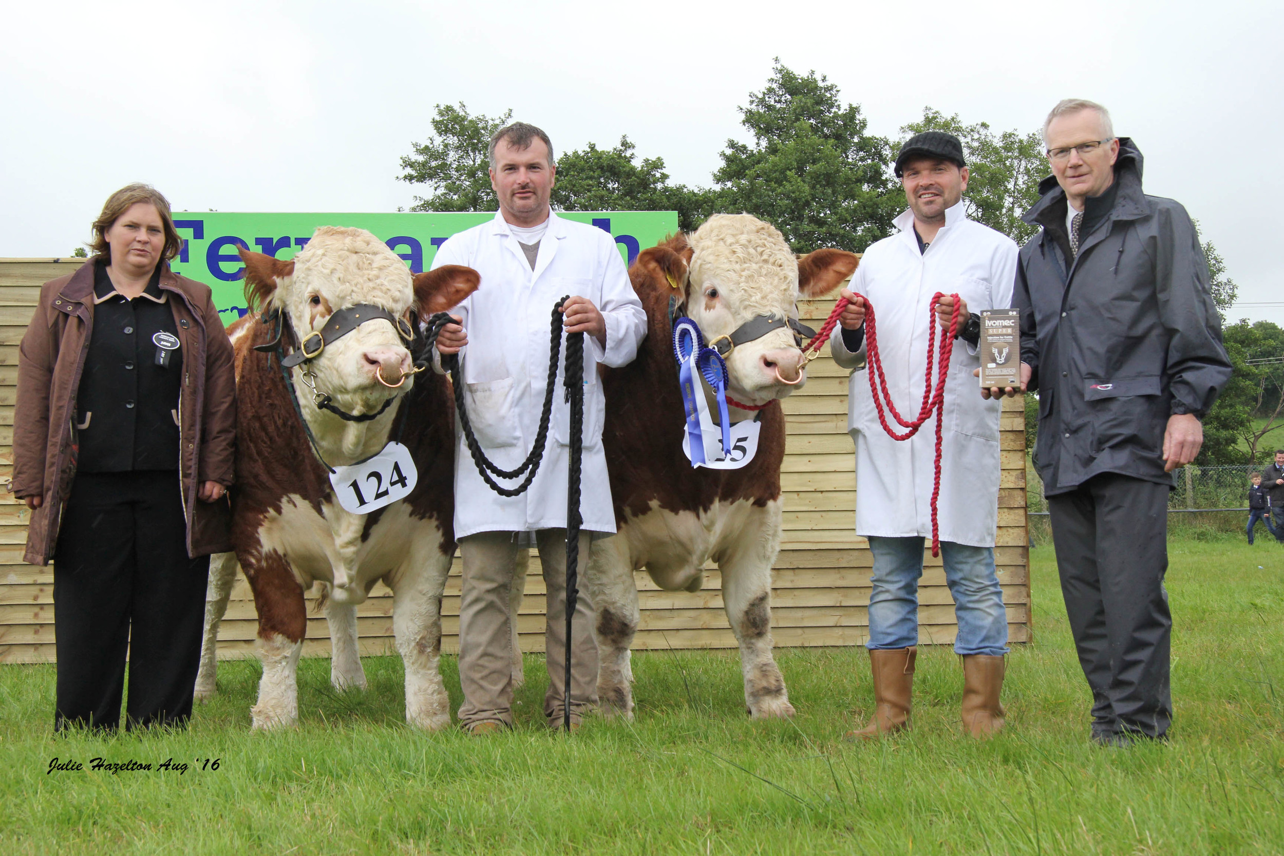 Alan and Neil Wilson, Newry, exhibited the reserve Ivomec Super Simmental Pair of the Year winners Ballinlare Farm Goldenballs and Ballinlare Farm Galaxy. They were congratulated by judge Bridget Borlase, Hertfordshire, judge; and sponsor Philip Clarke, Merial Animal Health.