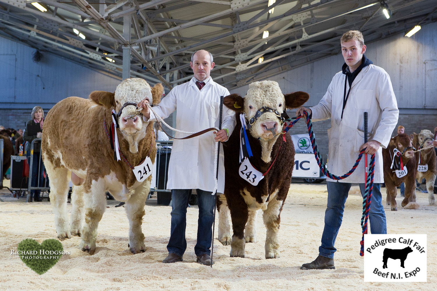 Junior Simmental champion was Ashland Humdinger exhibited by Frank Kelly, Tempo. The reserve junior champion was Drumlone Hotrod bred by Kenny Veitch, Lisbellaw.