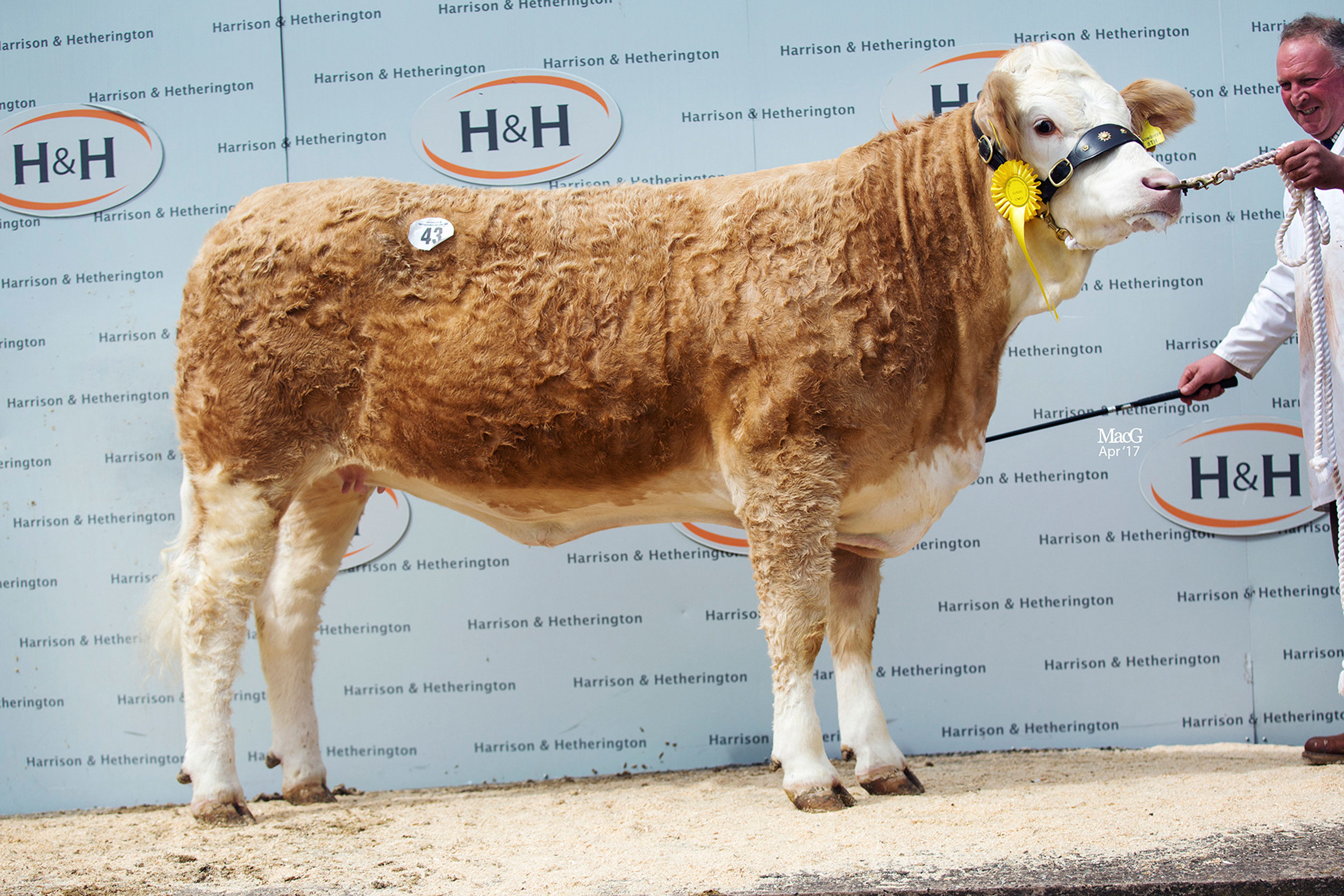 43-Williams-Snowqueen-8th-3600gns-5550.jpg