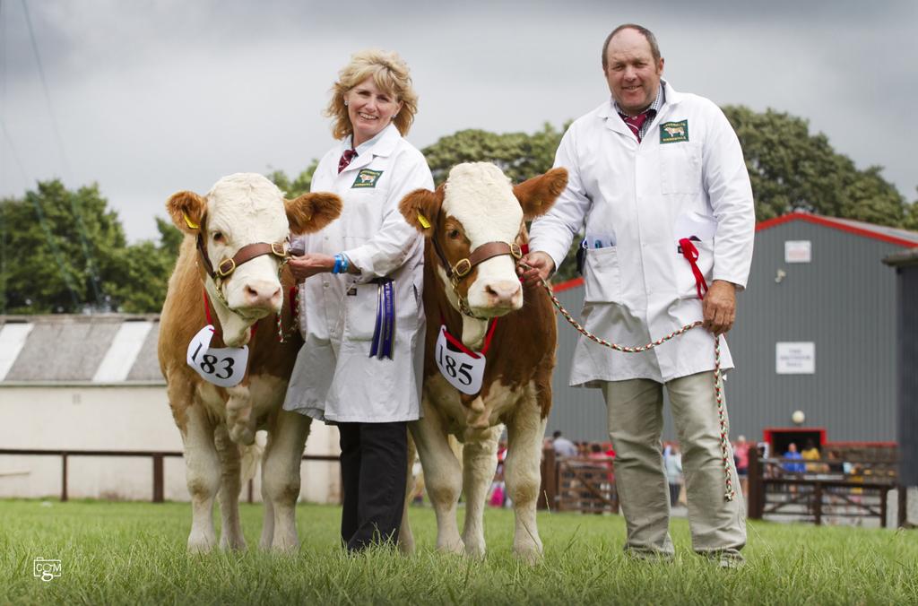 Best-pair-of-heifers-6023.jpg