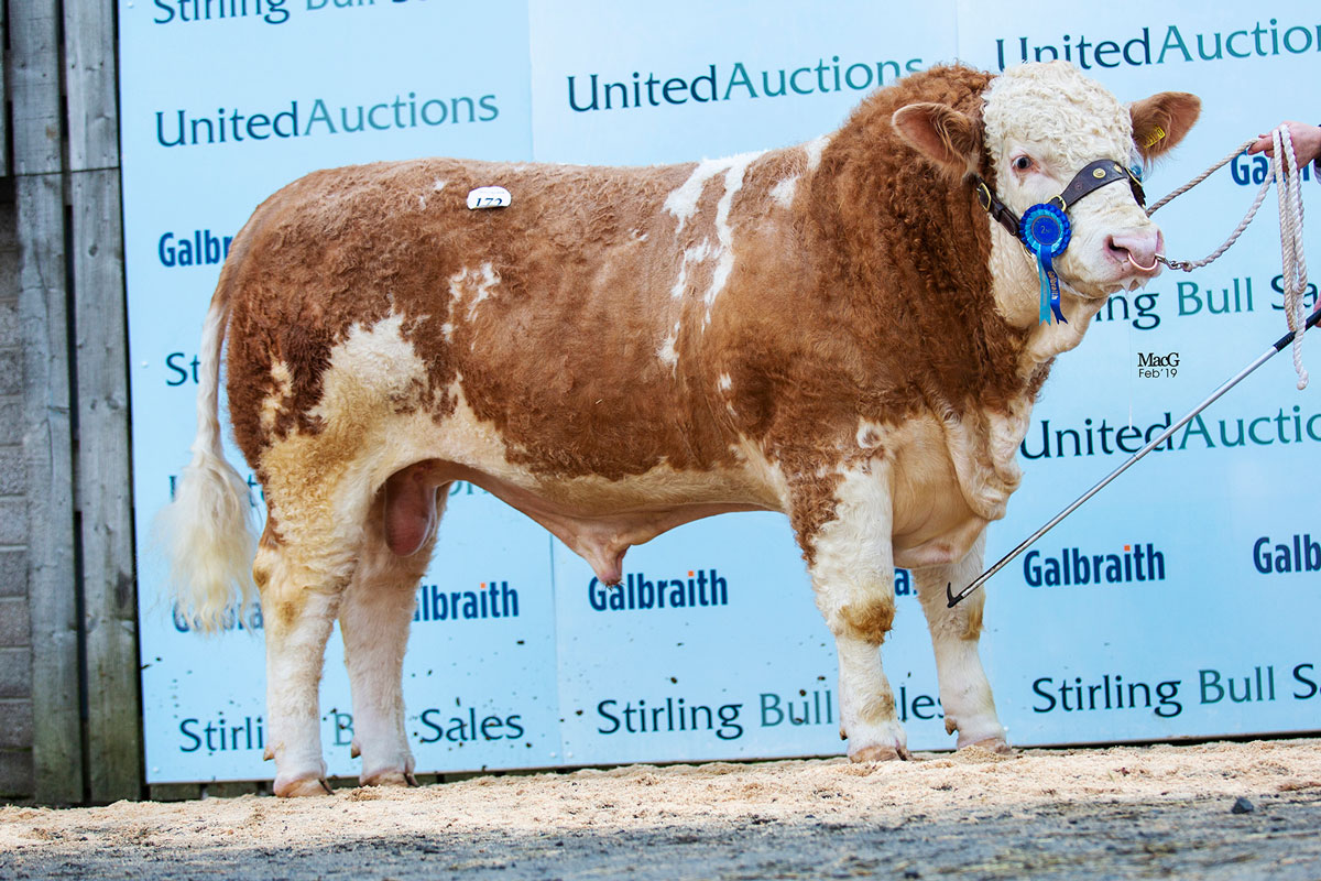 172-Kinclaven-Inclusion-5000gns-6513.jpg