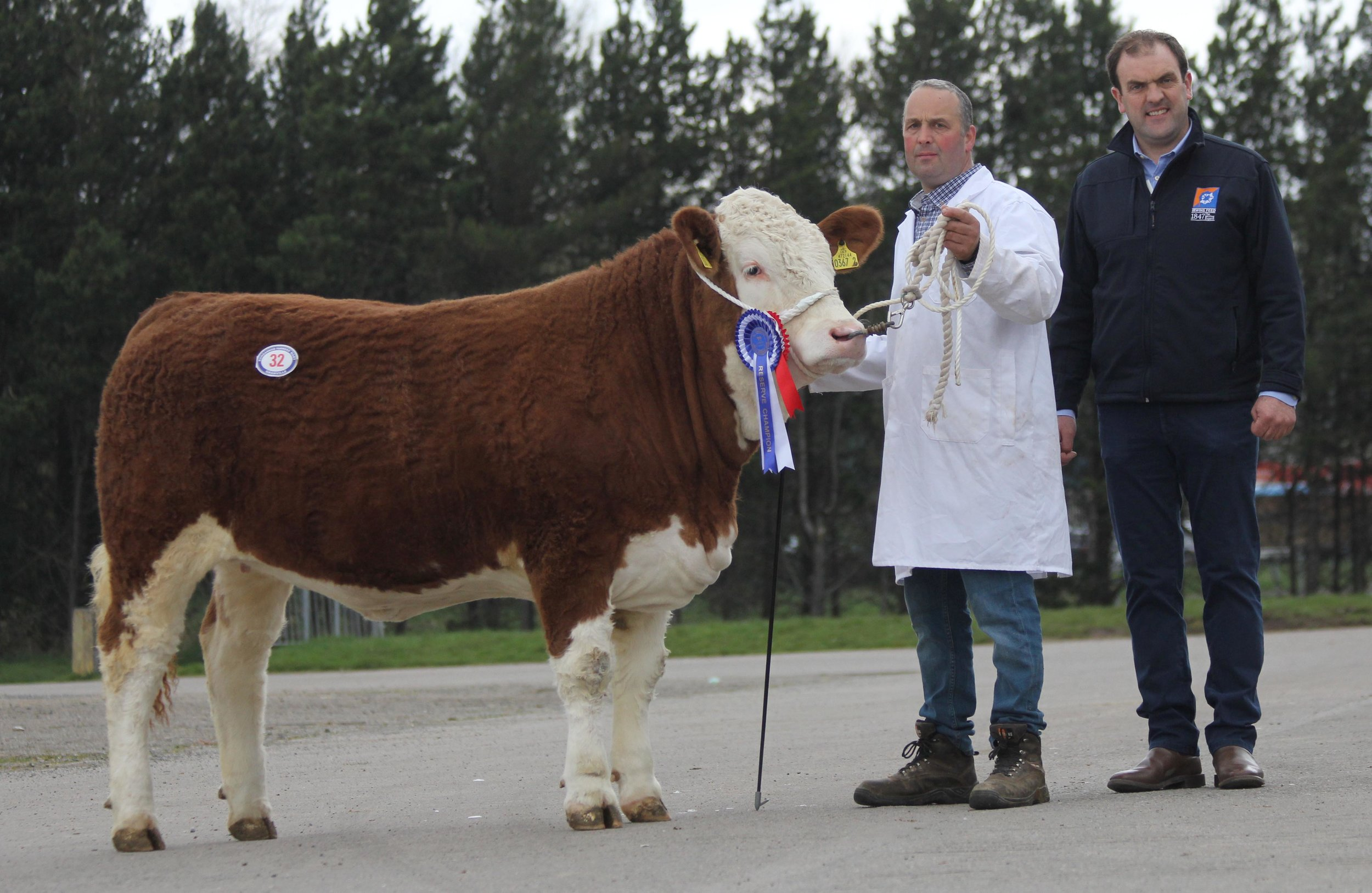 RESERVE FEMALE CHAMPION, REHALL JANE