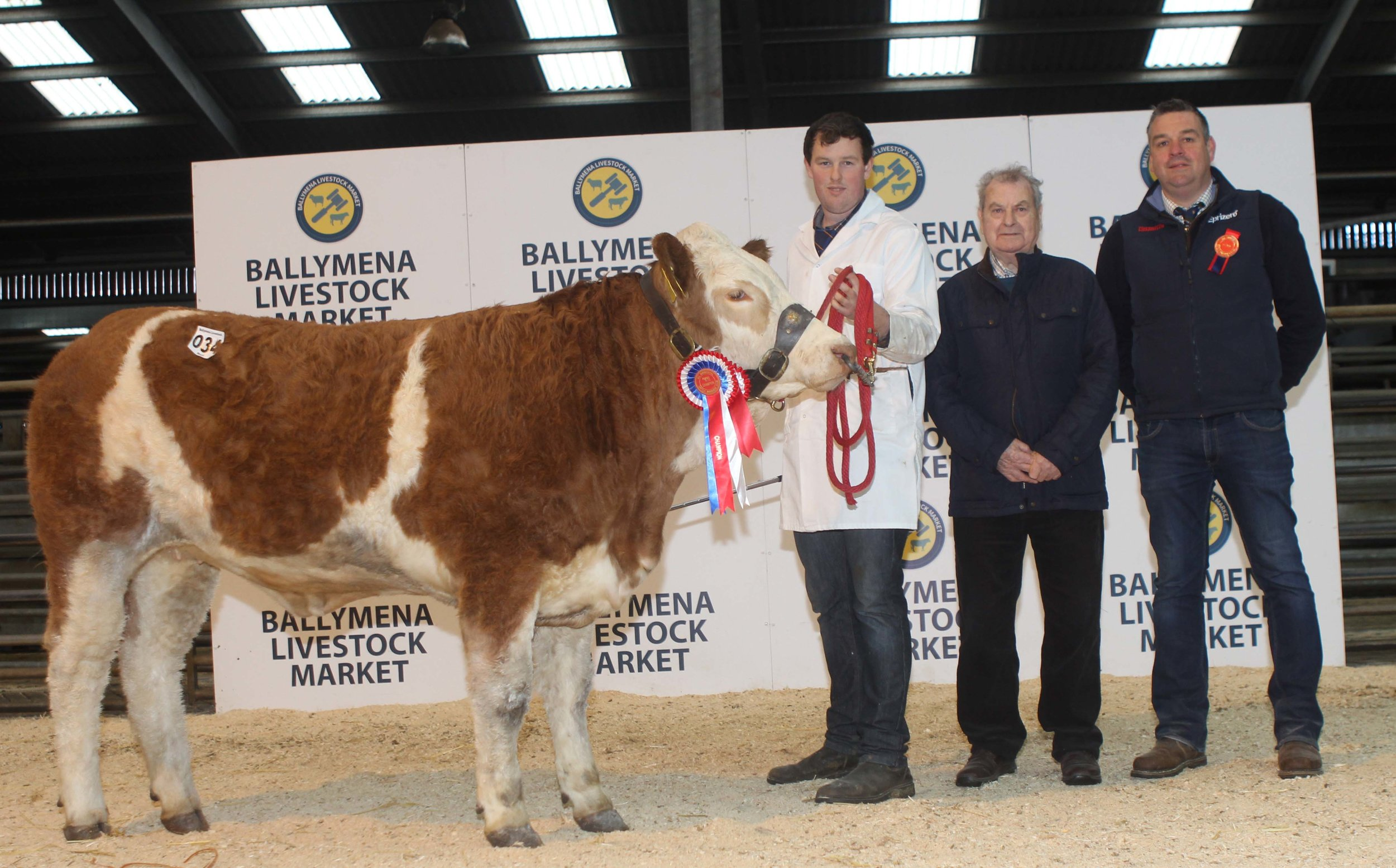 Female champion was Magheracrigan Kia shown by Allen Shortt, and owned by Wesley Abraham, Irvinestown. Included is judge Keith Nelson, Rosslea