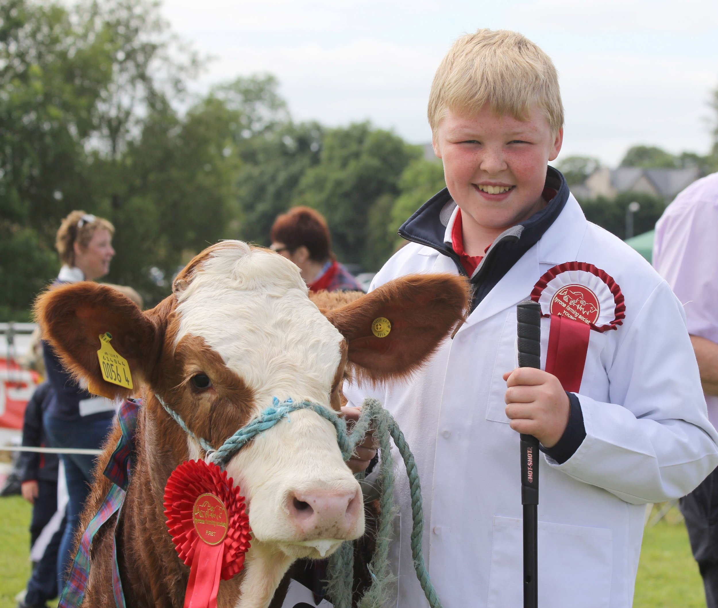 Thomas McAllister, Dungannon, was the winner of the junior young handlers class at the NI National Simmental Show.