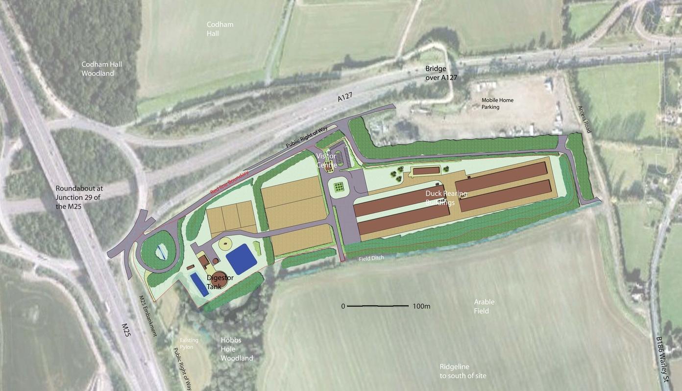 Codshall Masterplan 2.jpg