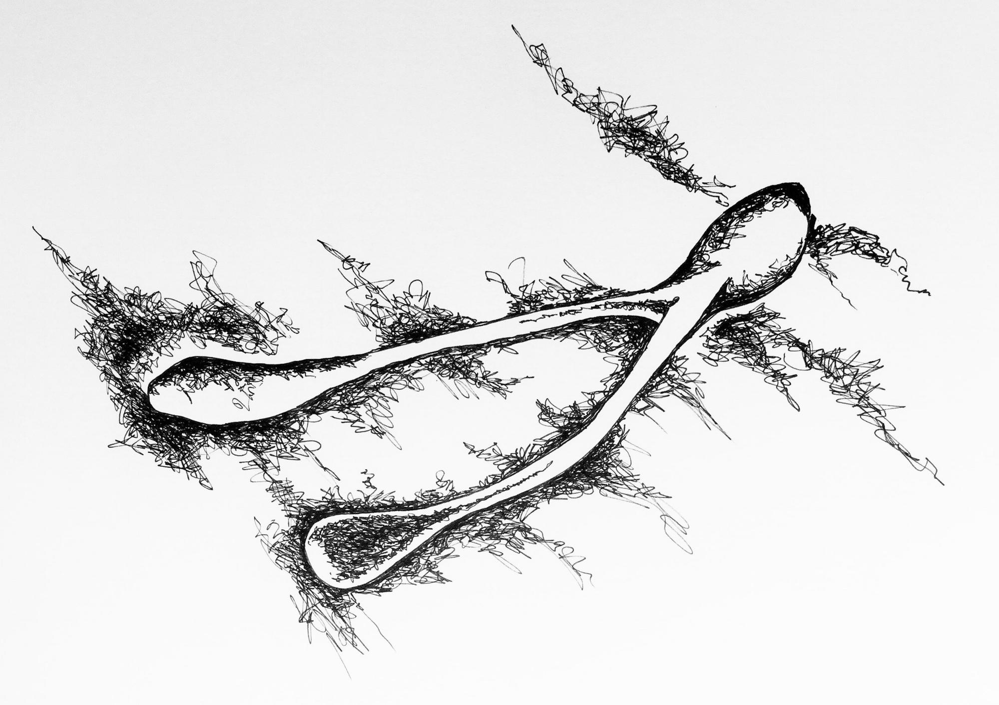 Ink Wish.jpg