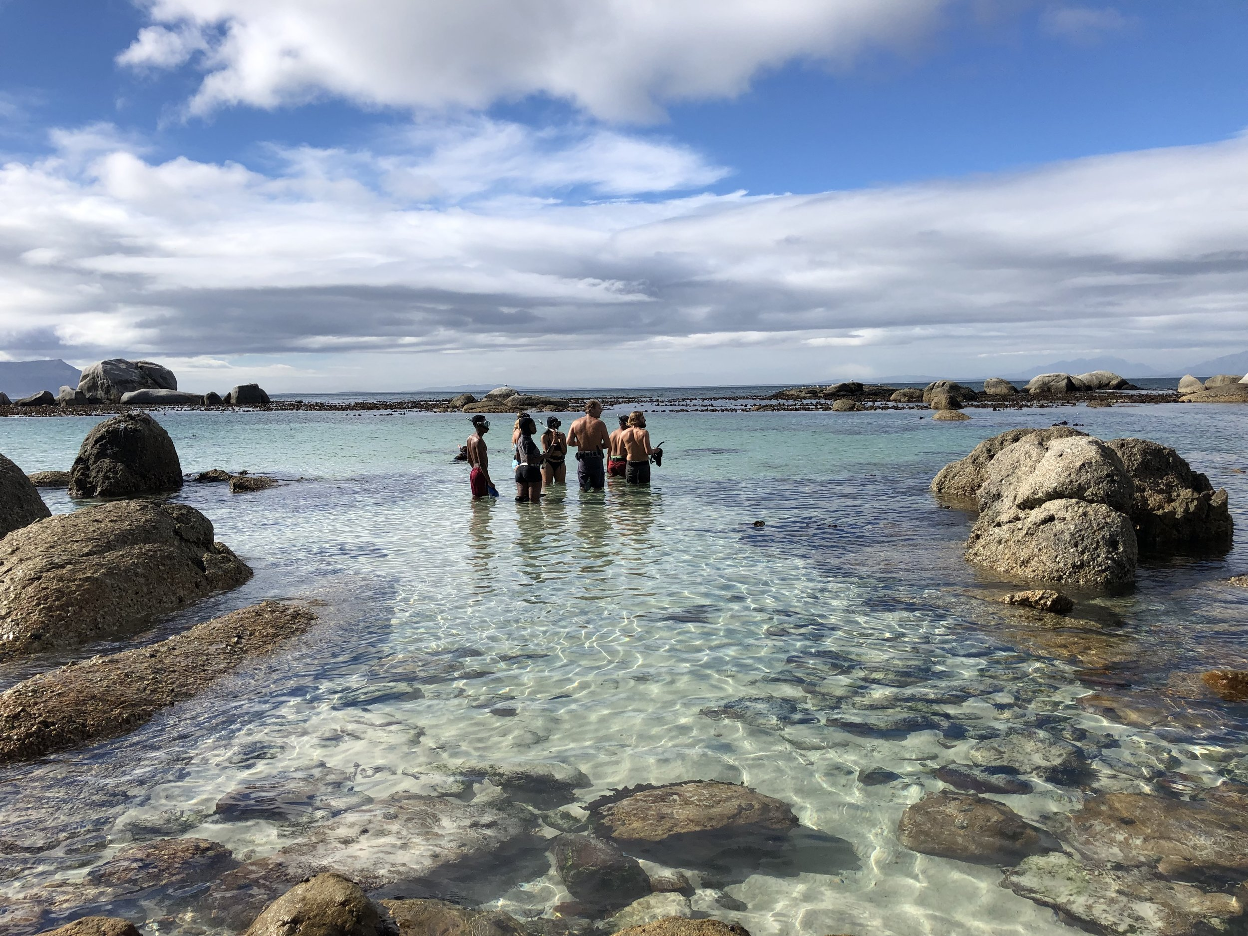 Craig Foster, the Sea Change Team and SANBI scientists preparing to dive into the Kelp Forest near Simonstown, Cape Town March 2019