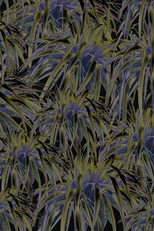 Optic Botanical