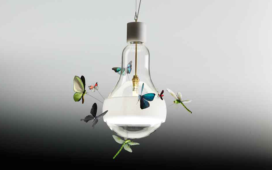 1/7 Two butterflies and a dragonfly circling around a light bulb. Johnny B. Butterfly is now in production after a year in development.