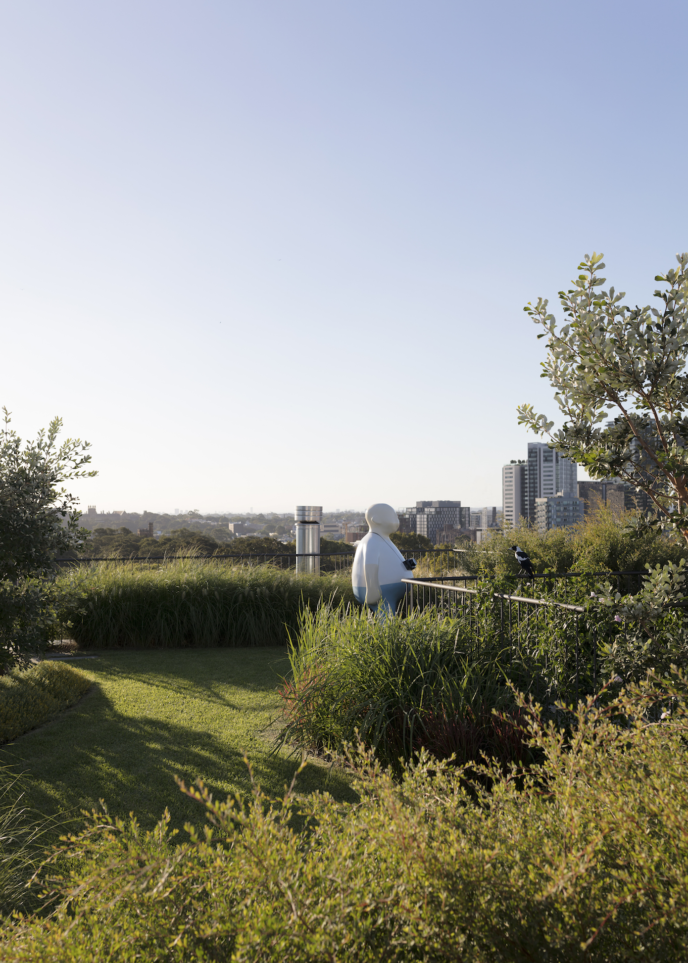 The rooftop;s urban meadow designed in collaboration with landscape architect Will Dangar. Photography Felix Forest.