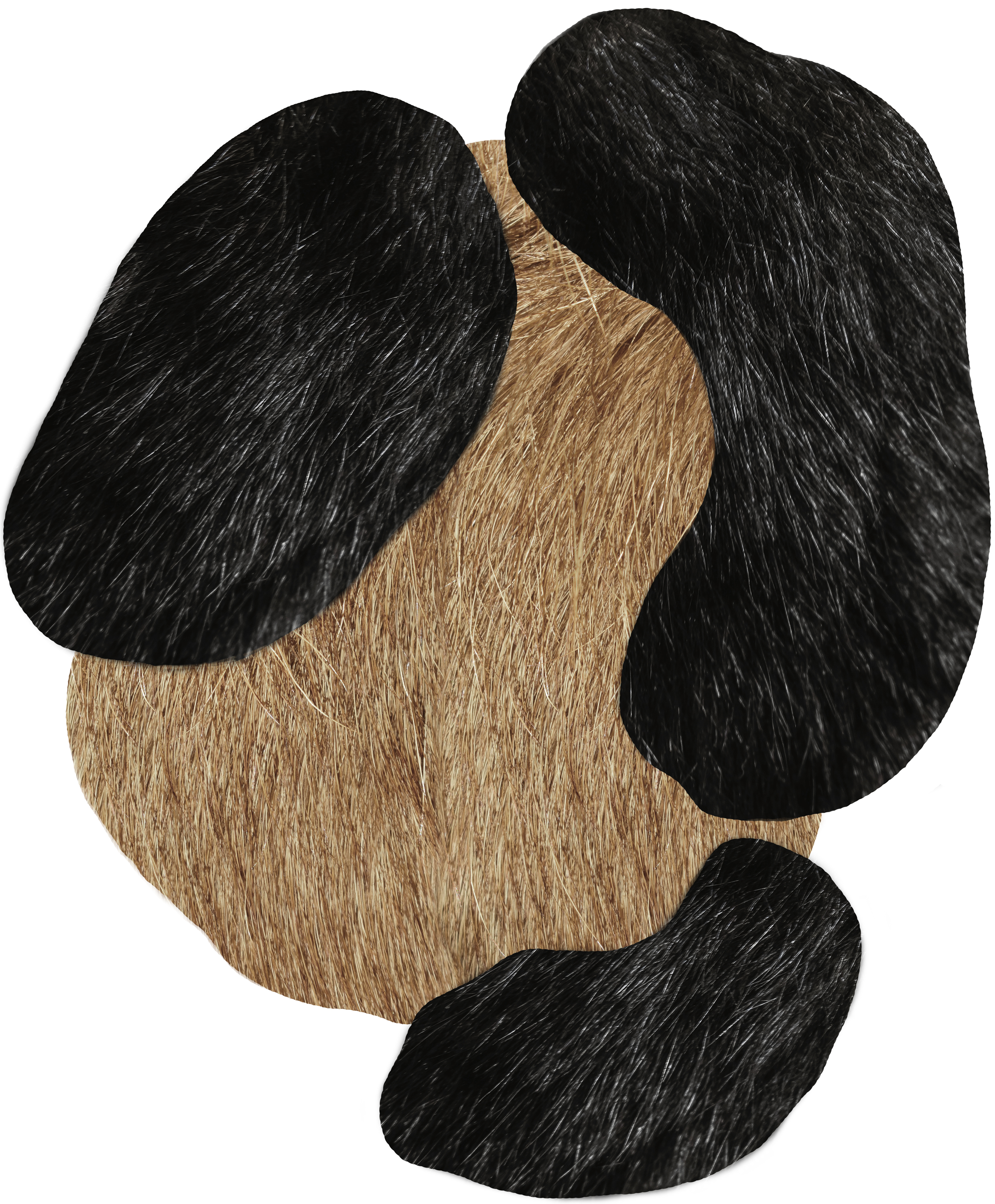 Moooi Carpets, Extinct Animals Collection – Bearded Leopard.