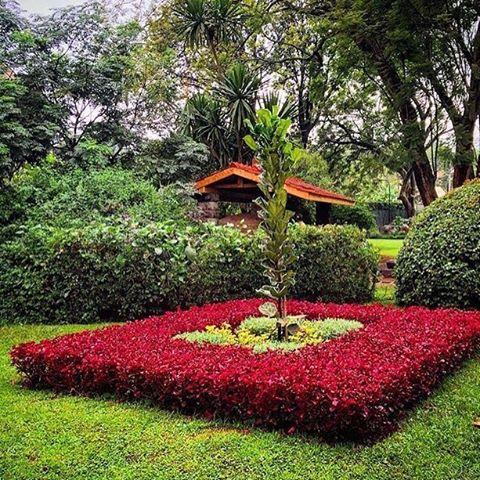 A peak into the gardens at #AmaniGardensInn
