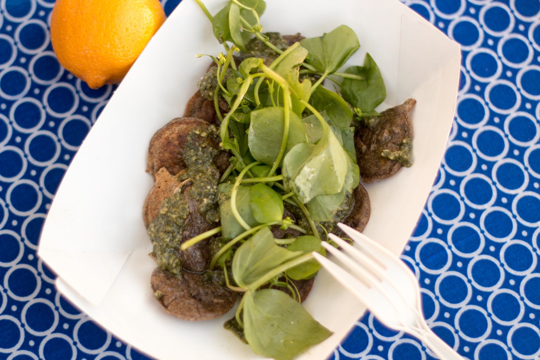 Foraged// Nettle Pesto, Miners Lettuce