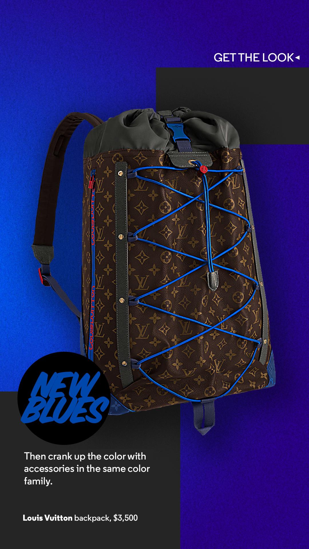 LVbackpack.jpg