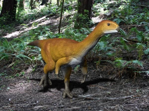 Chilesaurus_NT_small.jpg