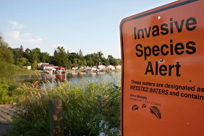 invasive_species_sign.jpg