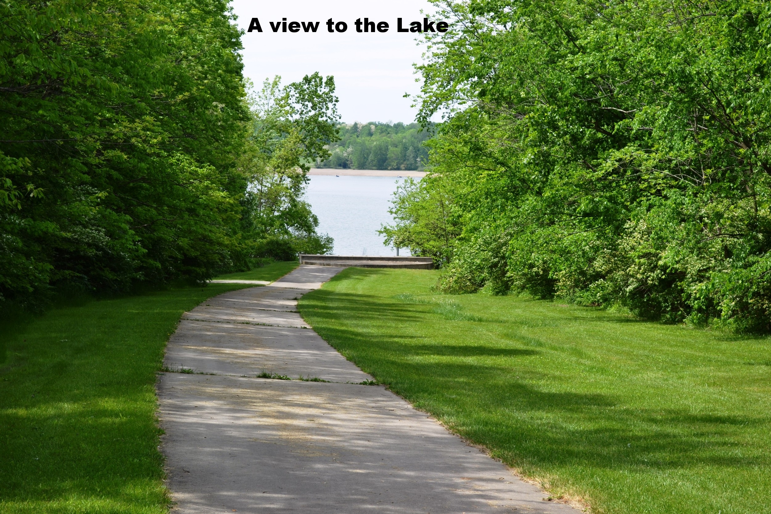 A view to the Lake