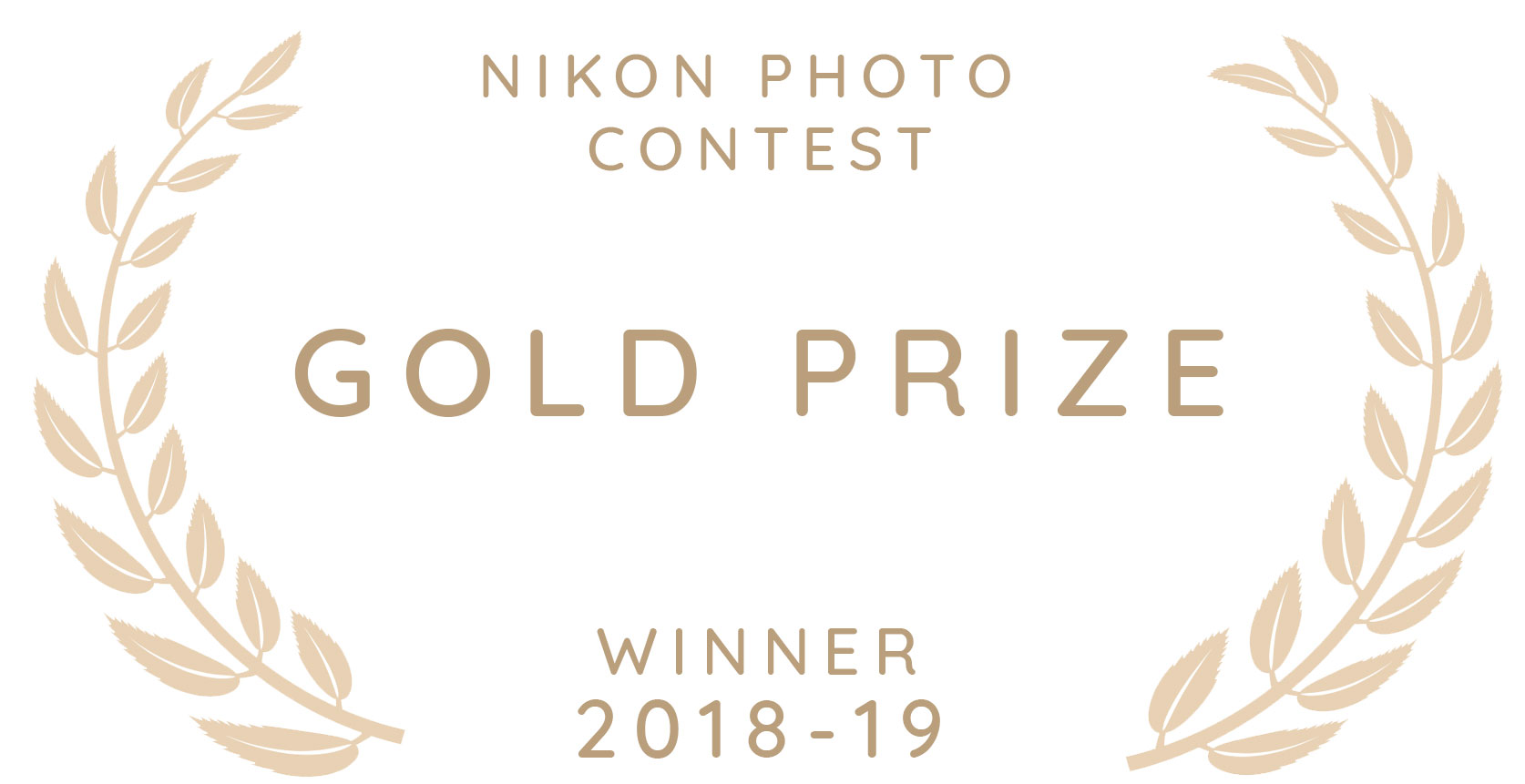 Nikon-photo-contest-award.jpg