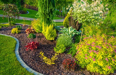 Gardens & Landscaping -  Create a picturesque landscape or gardening exhibit. This may include growing from seed, transplanting, landscape décor, etc.